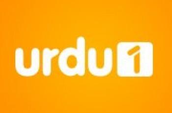 urdu 1 channel logo