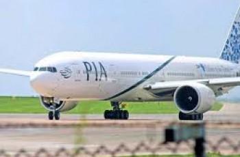 bird hits PIA plane