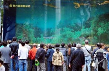 Shanghai-aquarium-break