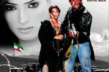 Movie Dil Paraey Des Mein Poster