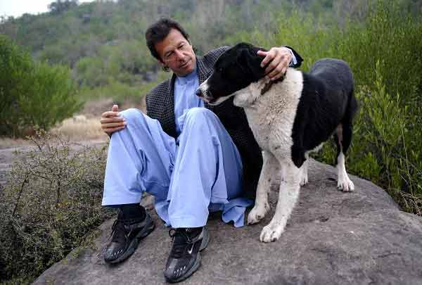 11 Pakistani Cricketers Lover Of Keeping Pet Animals