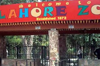 Lahore Zoo Board