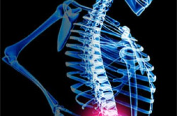 a pain in your back bone