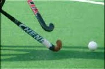 hockey bats