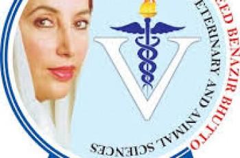 shaheed benazir university for veterinary and animal sciences