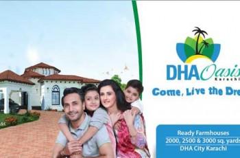 Dha-oasis-