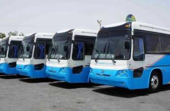 daewoo buses