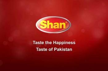 shan-foods-logo