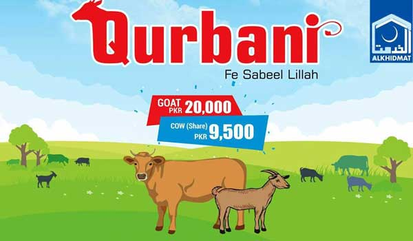 Al-Khidmat Qurbani Rates of Cow & Goat For Bakra Eid 2018