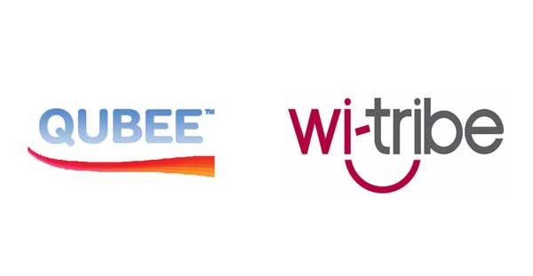 Qubee & witribe logo