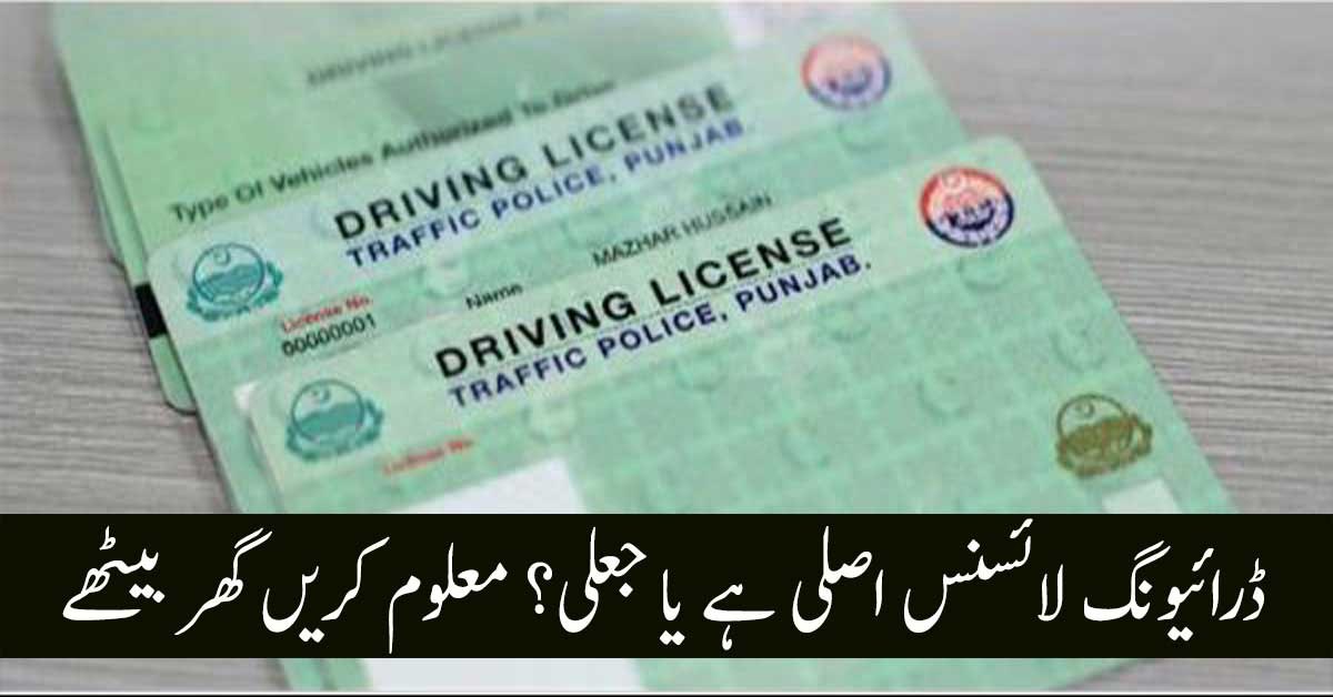 Driving License Online Check & Renewal Method in Pakistan
