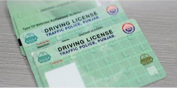 green colored driving licenses