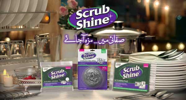 Scrub Shine Sponge
