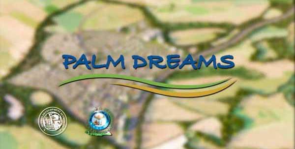Palm-Dreams-logo